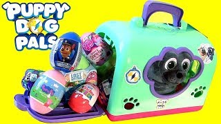 Puppy Dog Pals Bingo SURPRISE Groom & Go Pet Carrier toys review