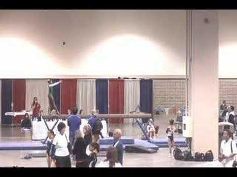 2007 level 9 10 texas state gymnastics meet
