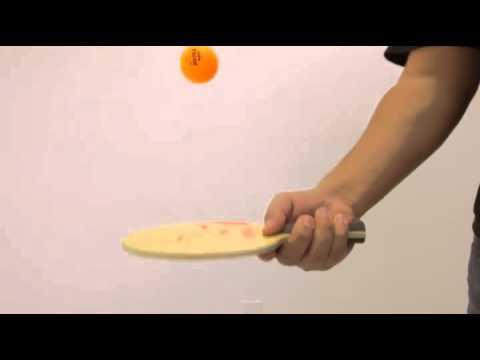 JOOLA Rossi Fire Anatomic Table Tennis Blade Reviews.