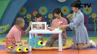 《七巧板》 20191228 健康宝宝大比拼 幼儿游戏精选| CCTV少儿