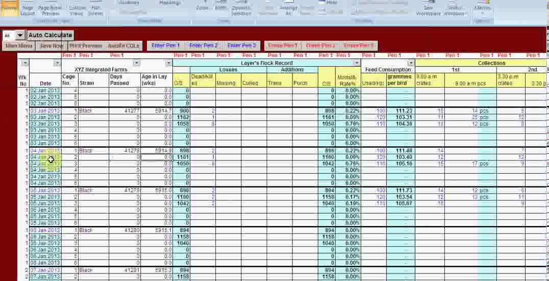 excel-vb driven poultry layer farm manager software - video demonstration