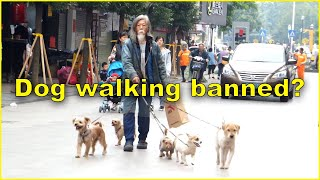 Chinese City Bans Daytime Dog Walking?