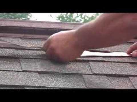how to prevent roof moss and algae