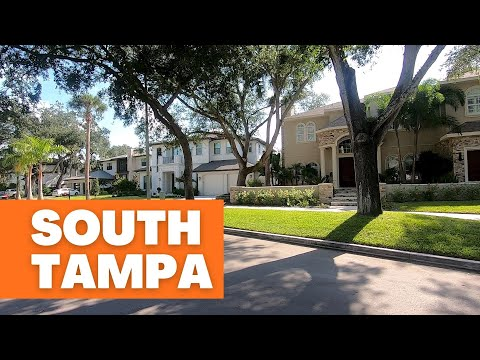South Tampa 🌴 One Of Tampa's Most Popular Areas | MELANIE ❤️ TAMPA BAY