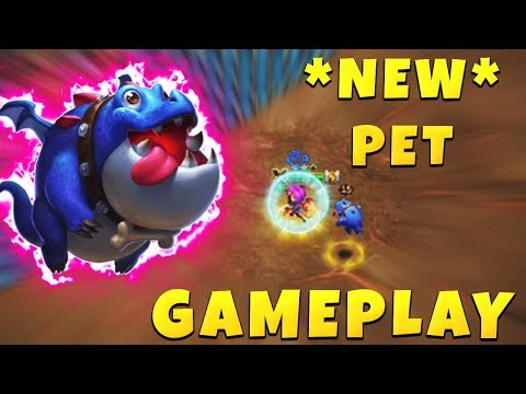 *NEW* Pet | DROGGO | Quick Review | GAMEPLAY | CASTLE CLASH