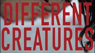 DIFFERENT CREATURES (OFFICIAL AUDIO)