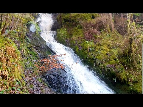 Gold Prospecting Scotland 🔥🔥Back To The Gorge🔥🔥Will There Be Gold??🤔🧐