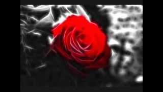 Таулан Тамбиев-  Чужая невеста