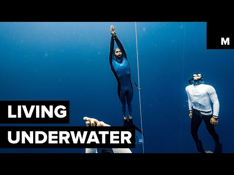 Adam Stern is a freediver, which means he can swim up to 300 feet underwater on a single breath