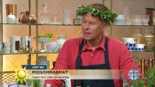 """Programledarna testar jordgubbssorter: """"Den har mest sötma"""" - Nyhetsmorgon (TV4)"""