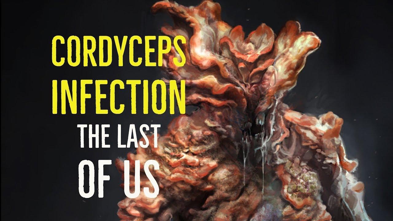 maxresdefault - Il gioco che ho amato ancora prima di giocarlo: The Last Of Us (recensione)