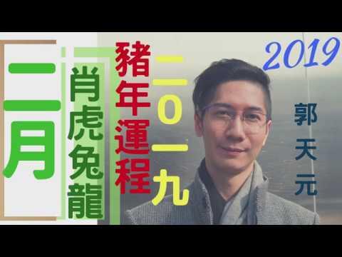 【生肖】生肖2019|月份 | ☯️豬年十二生肖運程簡介🌕 | 參考 & 啟示