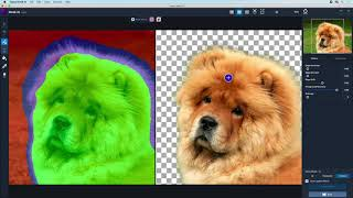 Learn better and faster image masking with Topaz Mask AI