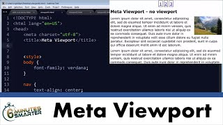 Use Meta Viewport for Responsive Web Sites