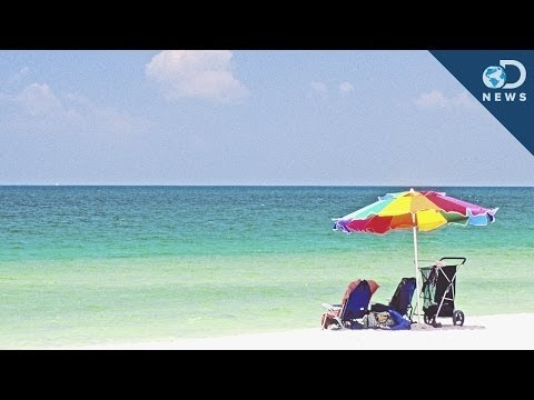Flesh Eating Bacteria On Florida Beaches!