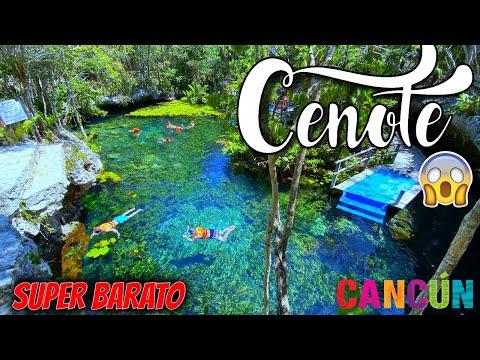 😱 Asi son los 4 Cenotes + Famosos RIVIERA MAYA (Solo $200 MX ($8.01 USD) 🔴 2 Ojos PARK ✅ CANCUN