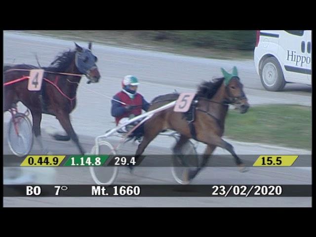 2020 02 23 | Corsa 7 | Metri 1660 | Premio Coriandoli