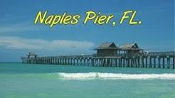 Naples Pier Live Stream