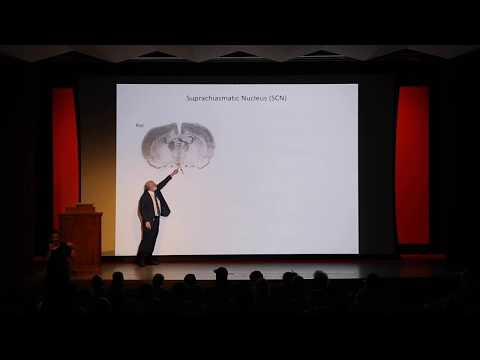 University Lecture Series Spring 2018: William Schwartz