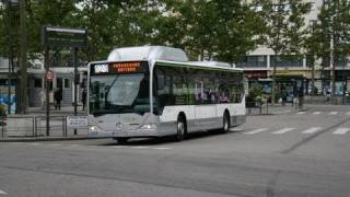 Mercedes Citaro buses all over Europe
