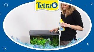 Gesundes Aquarienwasser für Fische: TETRA AquaSafe & SafeStart