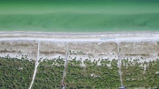 Florida Travel: Above the Beaches of Caladesi Island State Park