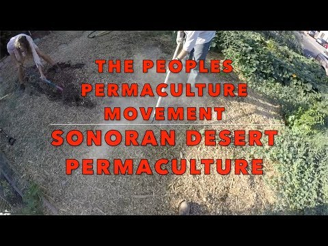 The Peoples Permaculture Movement: Drip Irrigation Install in Phoenix, AZ