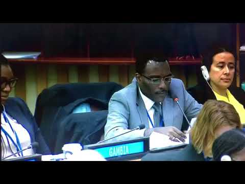 IMG_0190[1] (1).MOV/Chair / African Group/3rd Cmtee/ United Nations/Gabon