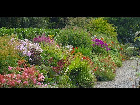 Our Herbaceous Border