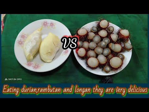 Eating durian,rambutan and longan they are very delicious