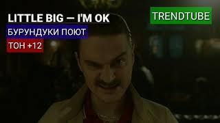 Бурундуки поют LITTLE BIG – I'M OK (ТОН +12)