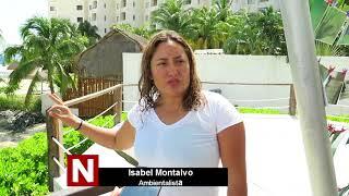 Protesta de ambientalistas en playa Langosta de Cancún