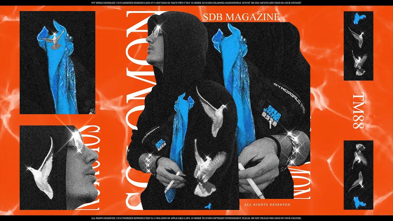Download Solomon - TM88 (Audio)
