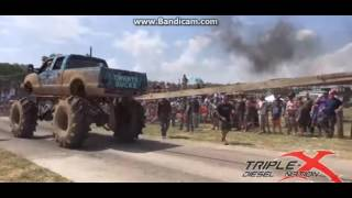 Diesel Incredible And Ridiculous Beasts Fighting