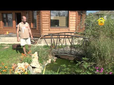 видео: «Бюджетный» пруд. Личный опыт // forumhouse