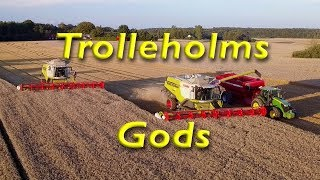 Trolleholms Gods Wheat harvest Sweden