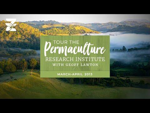 Geoff Lawton's Zaytuna Farm Video Tour Part II, 2013
