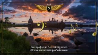 видео: Бас-профундо Андрей Курилов - Жило двенадцать разбойников
