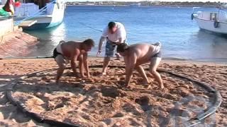 Тренировки тверских сумоистов в Египте