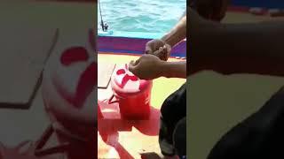 กินหมึกดิบเเบบโหดๆ บนเรือ ไต๋ นนท์ เเสมสาร