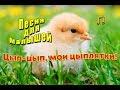 Цып-цып, мои цыплятки - детская песенка. Cücələrim на азербайджанском языке.