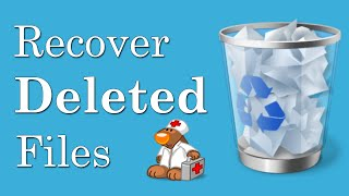 How To Recover Deleted Files From Recycle Bin - Best Free Data Recovery Software