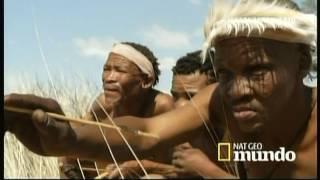 Gambar cover BOSQUIMANOS - Cazadores del Kalahari