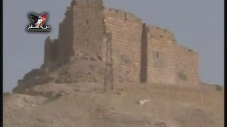 الجيش السوري يسيطر على مدينة تدمر الأثرية والقلعة المشرفة عليها