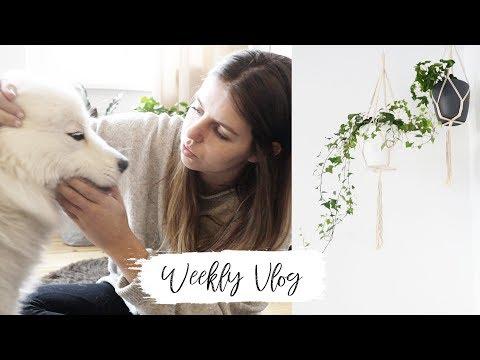 Weekly Vlog #23 - ENDLICH neue Einrichtung   Lovethecosmetics
