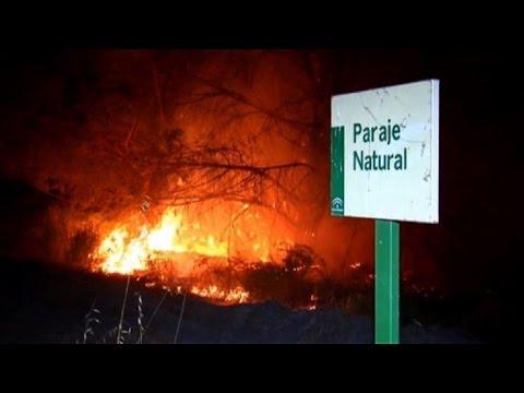Incendio causa estragos en parque natural de España