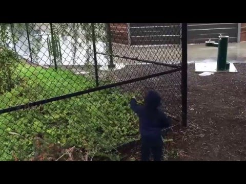 It's raining in San Diego and Malakai and Daddy venture to the park