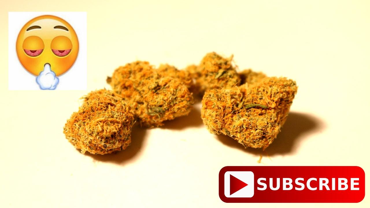 Orange Kush Seeds Strain Review – Wonderful Image Gallery