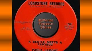 A Beatle Meets A Ladybug   Paula Lamont