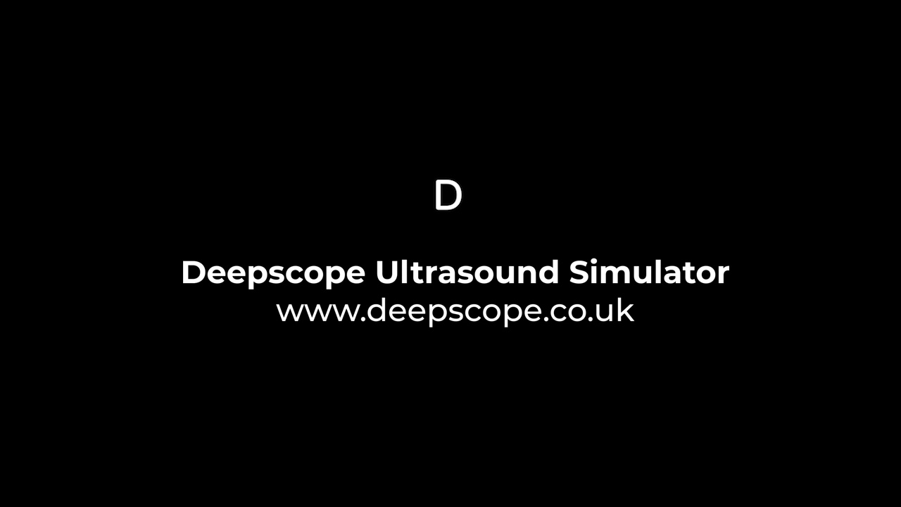 Interactive Group Virtual Ultrasound Simulation Sessions